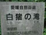 ehime_shirai_taki